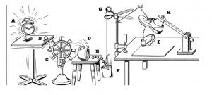 Rube Goldberg Summer Camp